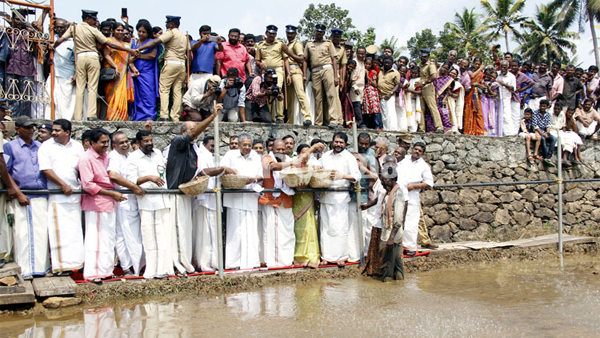 Chief Minister launching paddy cultivation in Aranmula Puncha